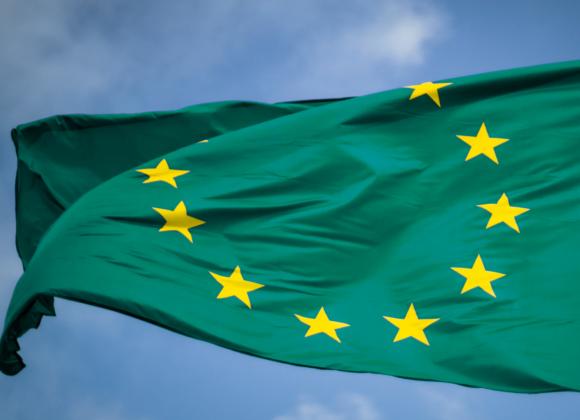 Tassonomia, criteri ESG e Renovation Wave per la rivoluzione green